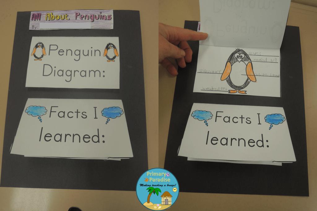 Penguin Flip Book Complete